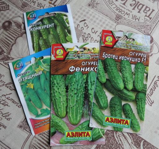 огурцы для открытого грунта семена сорт